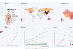 2020新型肺炎疫情开源项目②:自制全球疫情动态监测面板(Wuhan Coronavirus (2019-nCoV) Global Cases )