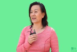 RVM:AI实时视频抠图,完美绿幕诞生